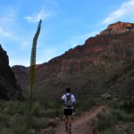 Jon hikes by a Century plant during dusk. Next stop: Cottonwood Campground.
