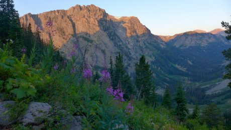 Flowers and granite and alpenglow.