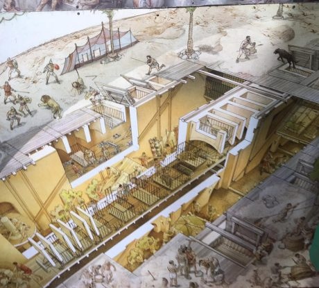 An illustration on exhibit at the Colosseum that shows what was going on under the arena floor before and during events as slaves worked with the caged animals, and had the task of operating manual lifts so the wild animals would each appear, as if by magic, onto the arena floor.