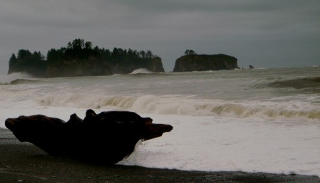 Rialto Beach, along the Pacific Ocean, and part of Olympic National Park.