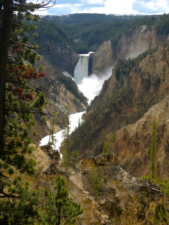 The 308-foot-high Lower Falls tumbles into the Grand Canyon of the Yellowstone.
